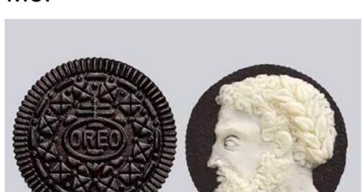 Here're Some Of The Best Hilarious Pics And Memes On The Internet To Make You Smile!