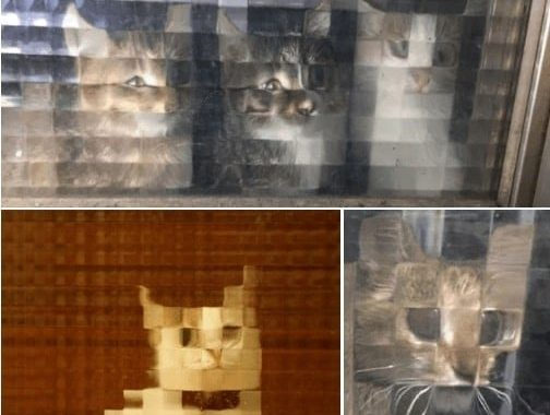 Trust Me – These Pixelated Cats Are More Entertaining Than Any Pixels Movie You Ever Watched!